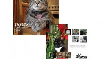 http://www.falconecreativedesign.com/wp-content/uploads/2014/02/Gallery-collateral-PAWS-213x120.jpg
