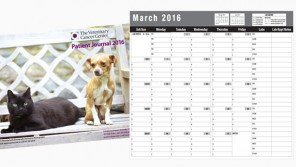 http://www.falconecreativedesign.com/wp-content/uploads/2016/02/VCC-patient-calendar-296x167.jpg