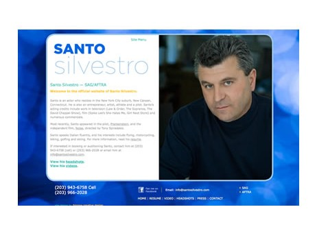 https://www.falconecreativedesign.com/wp-content/uploads/2014/02/Gallery-Web-Santo-462x353.jpg